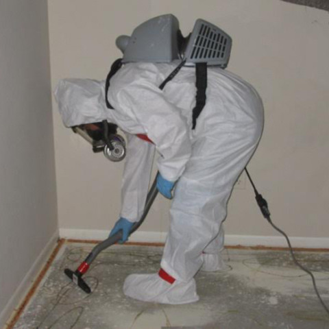 Mold/Mildew Treatment